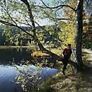 Bayerischer Wald: Kleiner Arbersee