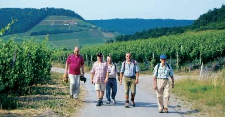 Franken Wanderregionen: Steigerwald