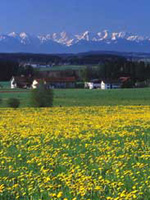 Spring in the Inn - Salzach Region