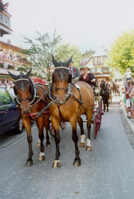 Rosstag in Rottach Egern